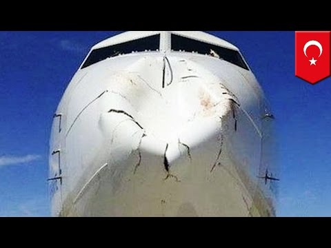 Airplane crashes into big fat bird: Turkish Airlines jet bird strike does damage - TomoNews