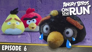 Angry Birds on The Run | Breaking and Entering - S1 Ep6