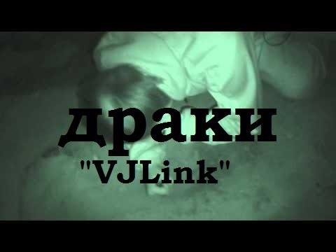 "Драки ""VJLink"""