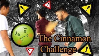 We Attempt The Cinnamon Challenge !!!