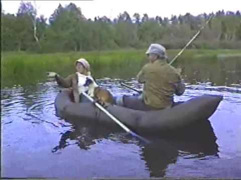 рыбалка в архангельской области виледь