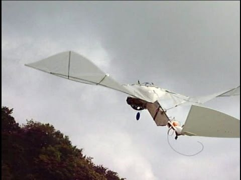 RC Ornithopter like a Cybird#1 羽ばたき機1号機