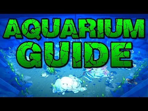 Runescape – Aquarium Guide & Overview! New Fishing Bonuses!
