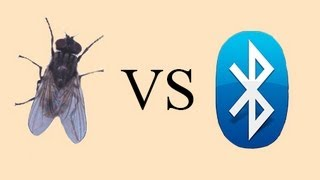 [How to kill a fly with BLUETOOTH] Video