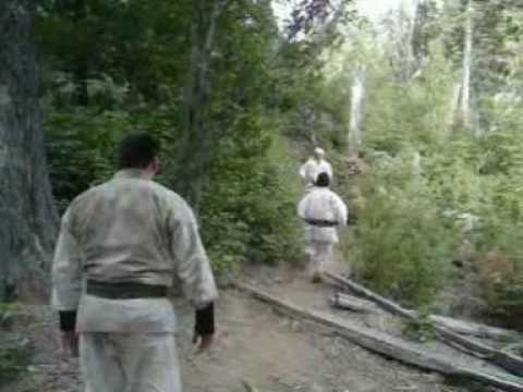 SHINSHINKAN ISSHIN RYU KARATE  CAMP FEB 2009  -  Video 2 : students in training Image 1