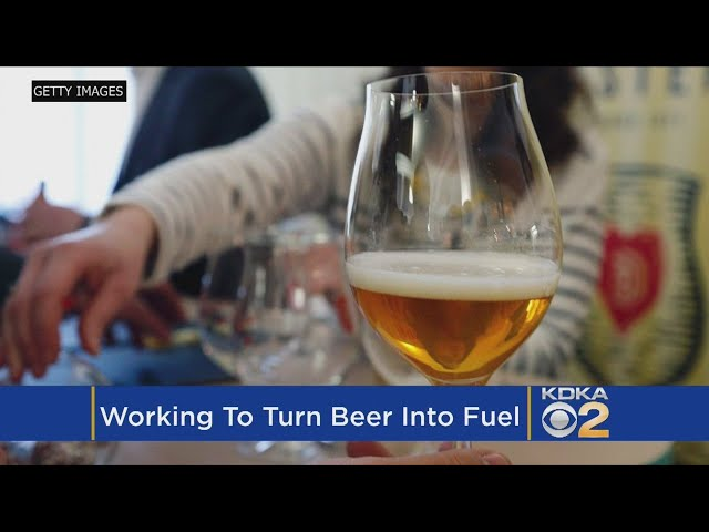 Cheers! Scientists Say They've Figured Out How To Turn Beer Into Gas