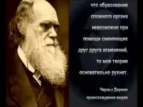 Крах теории эволюции Факт создания жизни Богом.