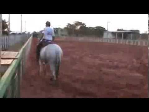 Egua De Boi Garota Safada video
