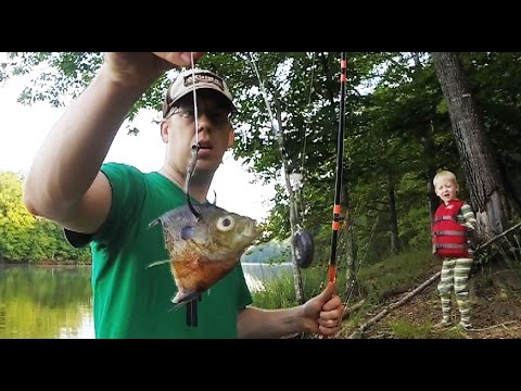 How to catch catfish from the bank - Bank fishing for catfish