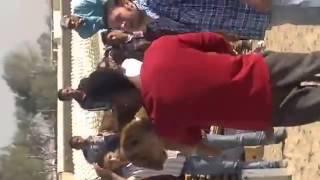 محمد رمضان يشيل الاسد فى فيلم قلب الاسد 2013