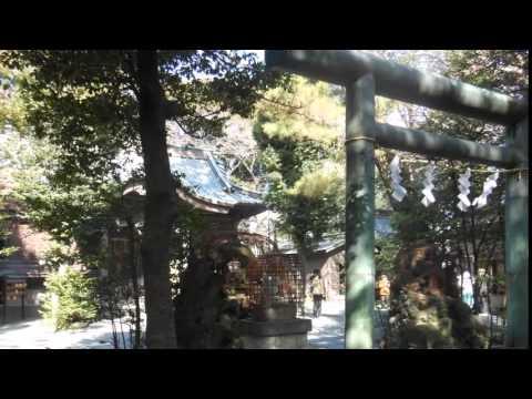 全米テニス準V効果で錦織神社に脚光 - 錦織神社とは? 小田原、大阪、岡山のキャプチャー