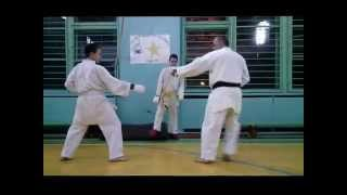 Sports karate training (February - March 2015)