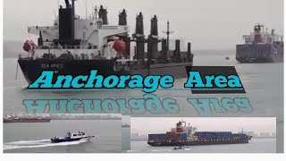 Anchorage Area(BUSy)