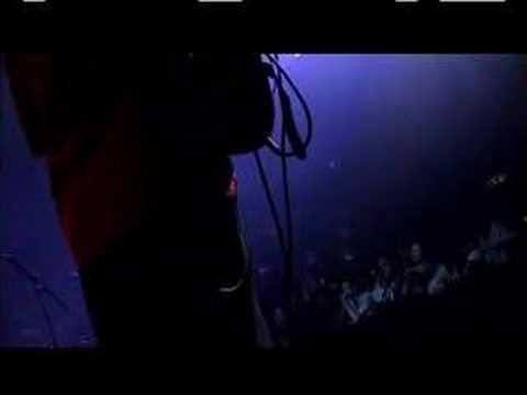 Particle (feat Joe Satriani and DJ Logic) - 'W'