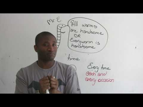"""English Grammar – """"All"""" & """"Every"""" – What's the difference?"""