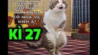Đọc Suy Nghĩ Động Vật (Kì 27) ✔ - Cười điên dại