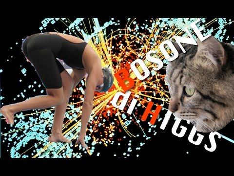 Il Bosone di Higgs spiegato con un gatto e una nuotatrice ungherese - MO#08 - CURIUSS