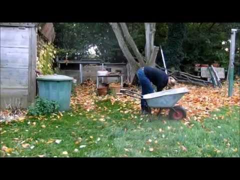 Was Passiert Noch Im Garten Ende Oktober?