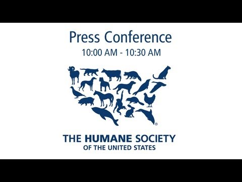 Press Conference: Georgia Regents University Investigation