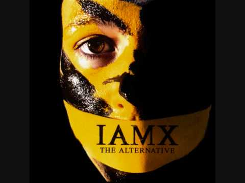I Am X - The Negative Sex