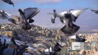sony rx100 mark 5 / slow motion pigeons in cappadocia
