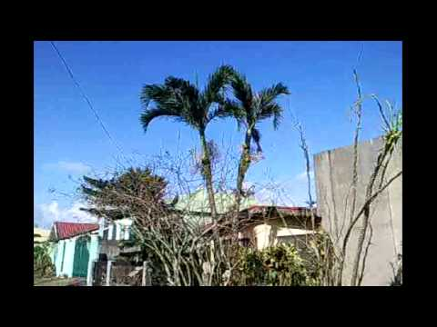 V&g : Post Typhoon Yolanda video