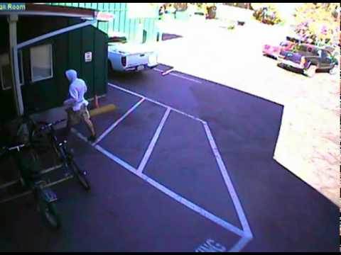 Chico Bicycle Thief Video