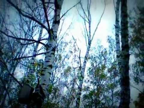 Ночные снайперы - Осень ну и что