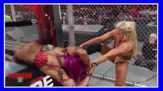 Sasha Banks vs Charlotte WWE Hell In a Cell 2016
