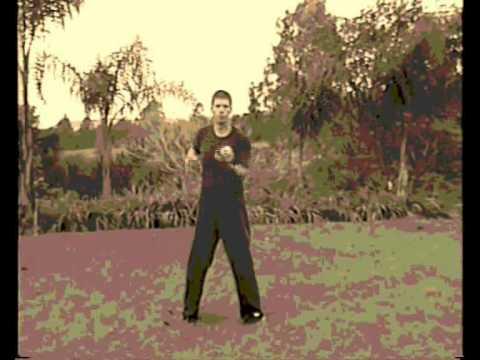 Lmf - Wing Chun Kuen