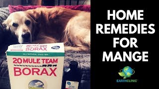 Home Remedies for Mange | Ted's Famous Borax for Mange Treatment