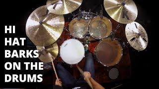 Hi Hat Barks on the Drums   Brian Haley