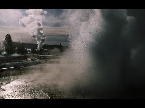 El despertar de Yellowstone