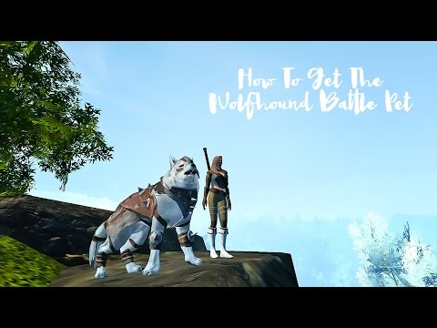 Archeage ☆ How To Get The Wolfhound Battle Pet ☆