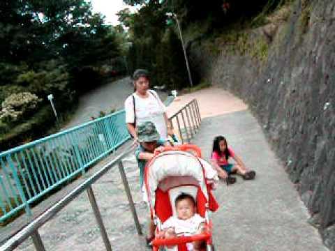 茶臼山動物園  10