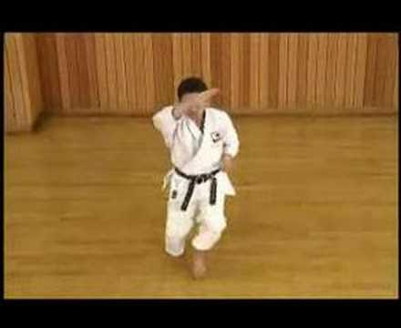 Kata Heian Shodan video