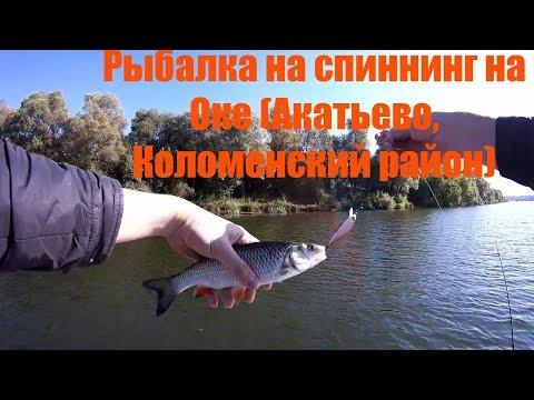 рыбалка на оке в районе на спиннинг