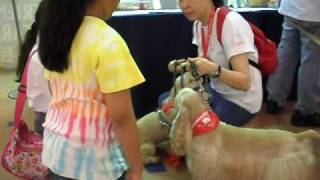 Dr Dog Team At Malaysia For Haiti Charity Event - Children Interacting With Dr Dogs