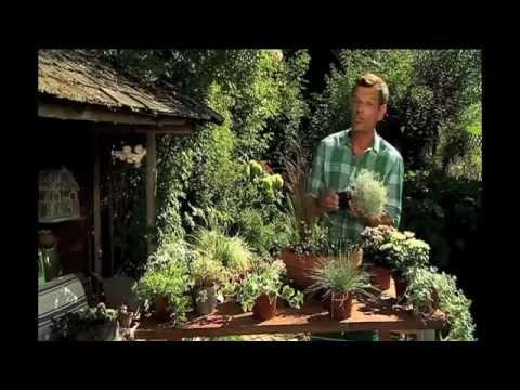 Natur Im Garten:
