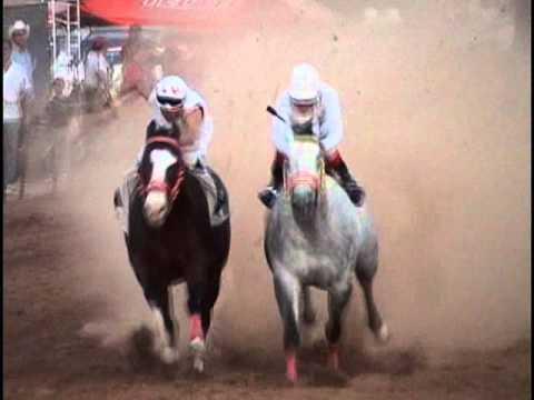 El H2 contra el Samurai | Carrera de caballos | Horse running  | Horse Racing |