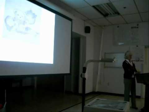 Erin Stillman discusses art curriculum at the Washington New Church School