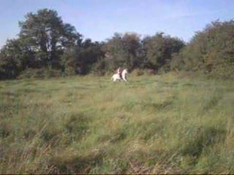 My Horse Snowy!! Xxx video