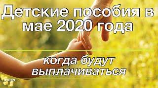 Когда будут выплачиваться детские пособия в мае 2020 году