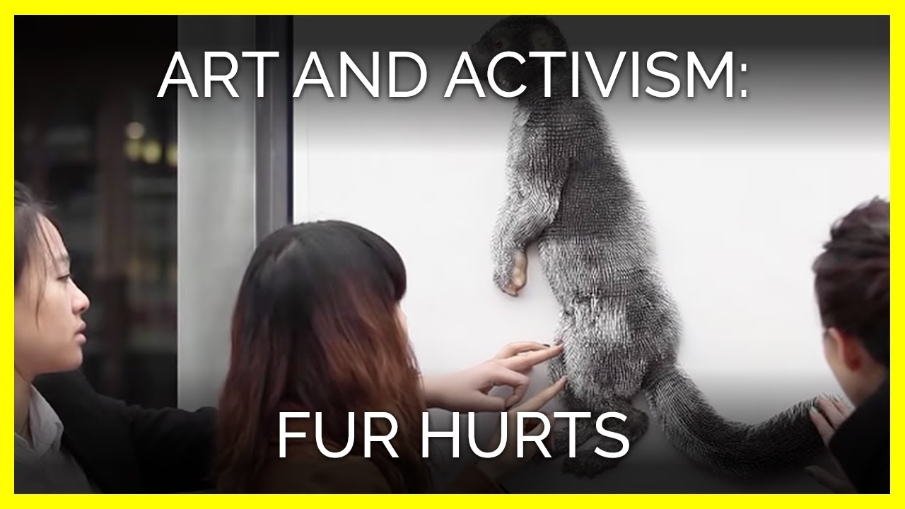 ethical treatment of animals The truth about peta they are not what they appear to be peta advocates and supports terrorist styled direct actions through the damage and destruction of property.