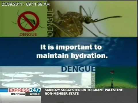 Symptoms & solutions: What is dengue