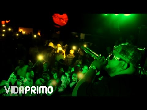 Ñejo – Mamisonga (Bucaramanga, Medellin, Popayan) (Colombia) (Live, 2016) videos