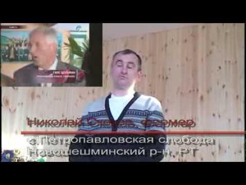 Орловские рысаки фермера Скокова