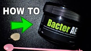 BacterAE - How To Use It And How To Dose It To Feed Young And Old Shrimp