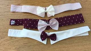 ENG H DIY Project: Dog Collar and Bowtie
