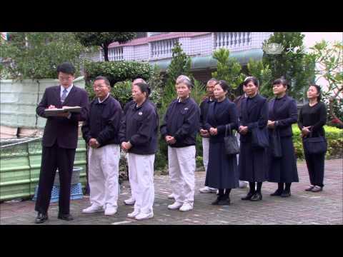 大愛-長情劇展-葡萄藤下的春天-EP 09